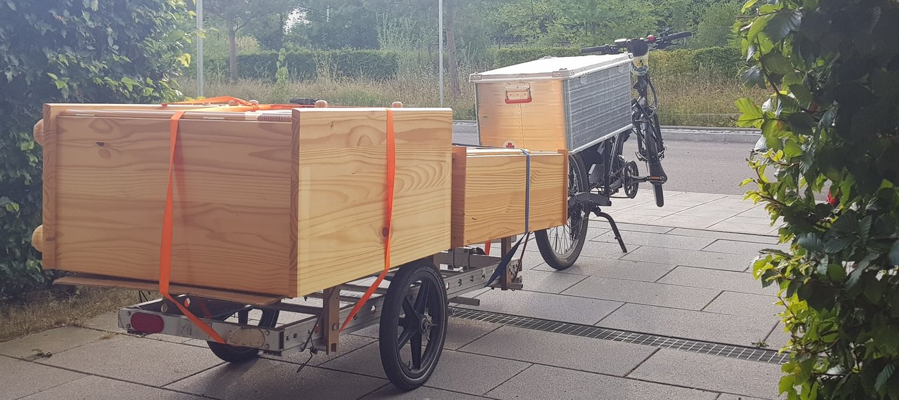 pic_Möbeltransport_1.jpg